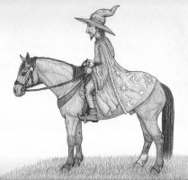 Rincewind on horseback by Bindi-342