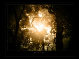 Love tree by t-motion