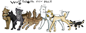 wolfs rain the  new pack by jakfan213