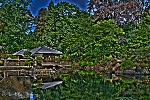 The Japanese Garden4 HDR by xMAXIx