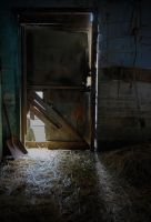Inside view of the cat barn door by PAlisauskas