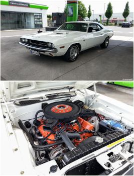 1970 Dodge Challenger by shenanigan87