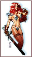 Red-sonja-with-her-sword-and-scale-armour-suit by talha122