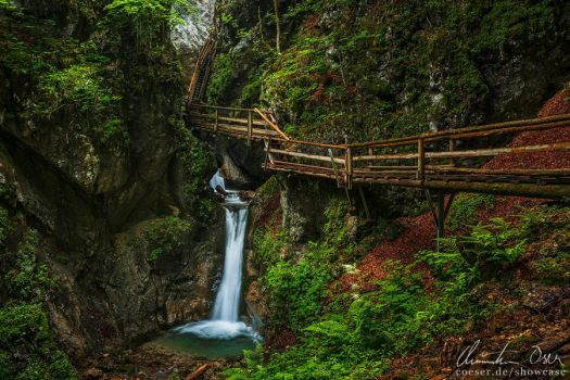 Dr Vogelgesang Klamm 01 by Nightline