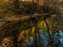 The River of Reflection by mjohanson