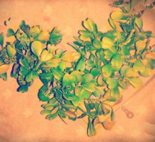 heart leaves by chilindrini
