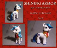 Shining Armor by liz-neko