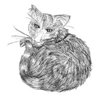 100 Themes: 23 Cat by P0W4H-L4D33