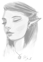 Elf of the North by BloodyWing