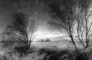 Landscape black and white by flucus