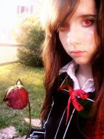 Withered rose by Smikimimi