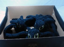 Box o Night Furies by Cryptic-Enigma