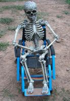Wheelchair Skeleton 4255811 by StockProject1