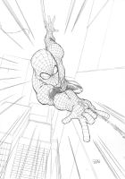 Spidey Swing by Variable-Edge