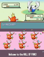 Magikarps of Chuck Norris (Edit) by PanzerKnacker73