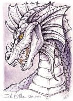 ACEO - Dragon by synnabar
