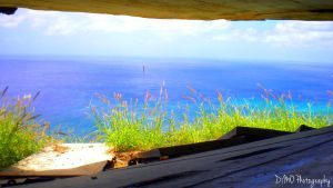 View From the Window of Diamond Head by AllAboutDianne