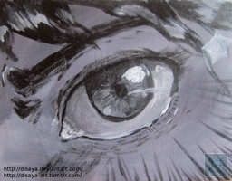Eye panel by Disaya