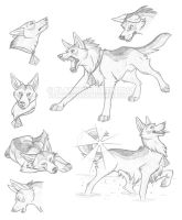 Sketch Sheet: Gomaru by FlannMoriath