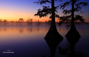 Sunrise Fog and Color by TRBPhotographyLLC