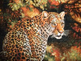Leopard in the Jungle close up by Karexie-Maylin