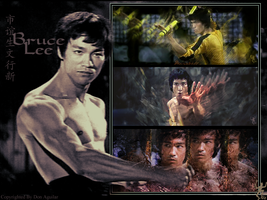 Bruce Lee Tag Wall by satan-x