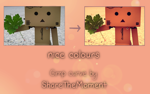 Gimp Curve - Nice colours by ShareTheMoment