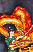 Book Cover - Mulan by Jube-Squared