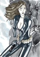 black widow by syr1979
