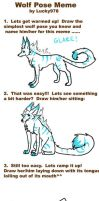 Wolf Pose Meme by JenniferEasley