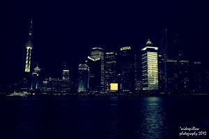 Shanghai at Night by widexpillow