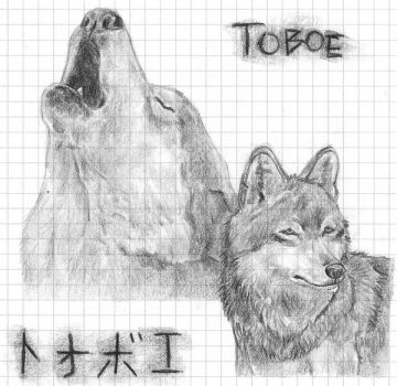 Wolf - Toboe by Lupo-Selvaggio