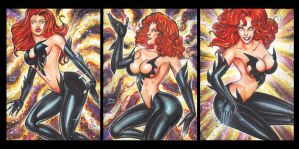 BLACK PHOENIX PERSONAL SKETCH CARDS FEBRUARY 2014 by AHochrein2010