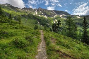 Mountain Trail by Burtn