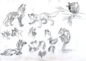 Sketches II by Wolframclaws