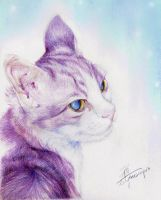 Cat - Lonely and Gorgeous by lilythescorpio