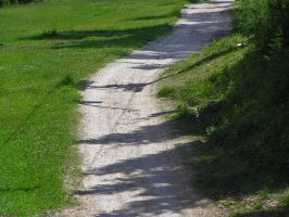 Shadows on the path by edelweiss26