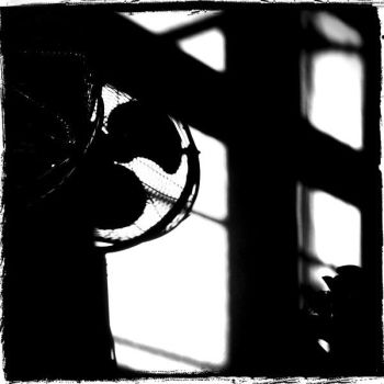 Shadows by Window-Pain