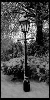 Lamp Post by otislifts