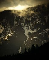 Morning in Sequoia.02 by Monque