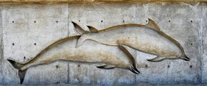 Dolphin Wall Sculpture 1 DSC 0061 copy by annamae22