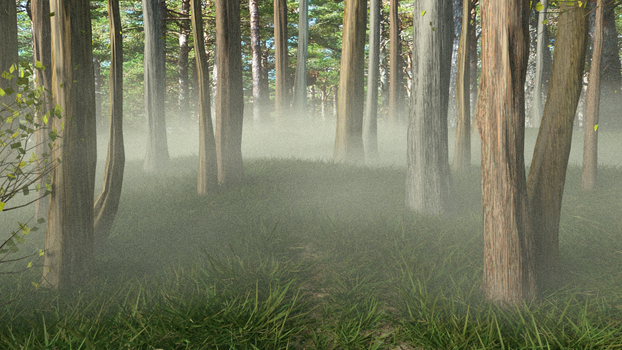 Forest by rrr2015