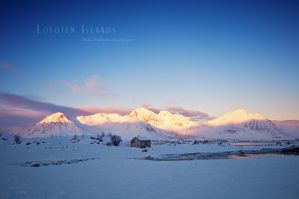 Cold Conditions by Stridsberg
