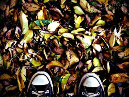 The Fall by Emagyne