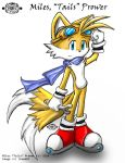 High Flyer - Tails by chemb0t