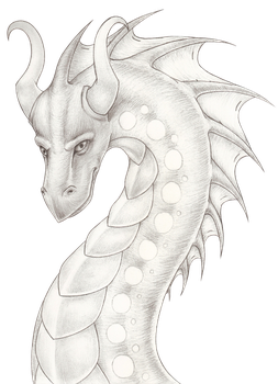 Graphite Dragon by Dragon54082