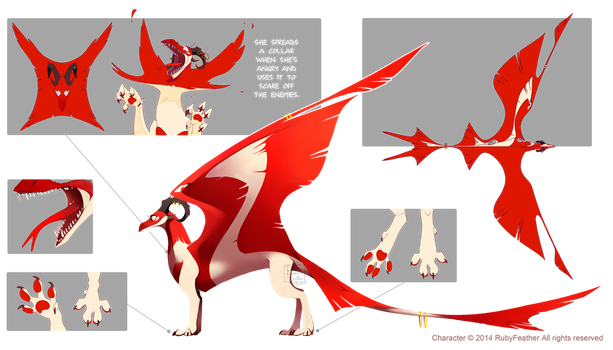 Liora - Reference Sheet by RubyFeather