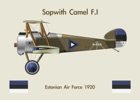 Fridge Magnet Sopwith Camel 1 by WS-Clave