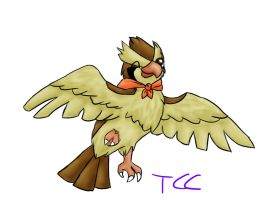 Pidgey by TheCheeseCannibal