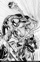 Spider-Man vs.The Green Goblin by derrickfish